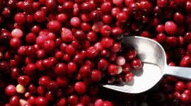 Cranberry Juice High Quality Wallpaper