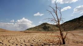 Droughts Wallpaper HQ