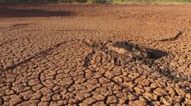 Droughts Wallpaper HQ#2