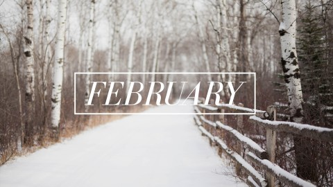 February wallpapers high quality