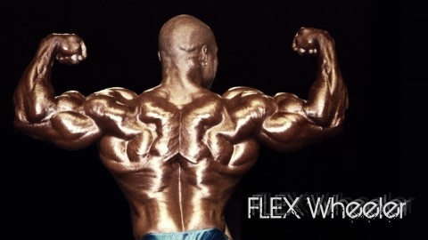 Flex Wheeler wallpapers high quality