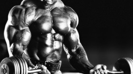 Flex Wheeler Wallpaper Free