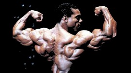 Flex Wheeler Wallpaper HQ