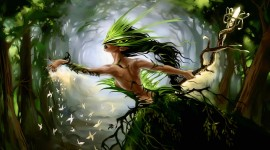 Forest Fairy Wallpaper Download