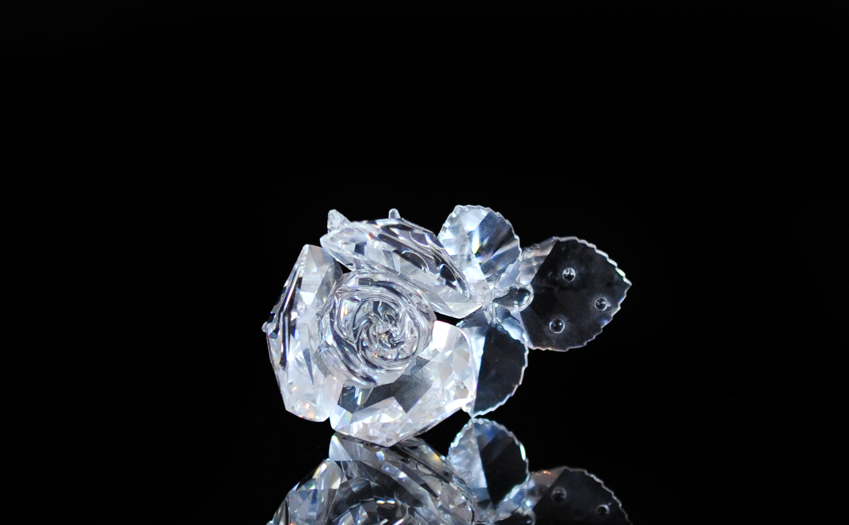 Glass Rose Wallpapers High Quality  0e1484651c