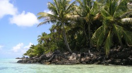 Madagascar Island Wallpaper Background
