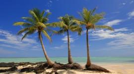 Madagascar Island Wallpaper HD