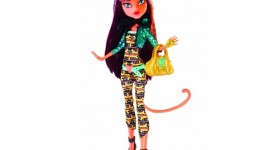 Monster High Freaky Fusion Photo#3