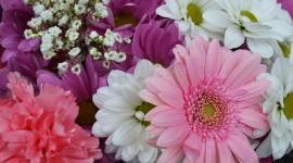 Multi Colored Bouquets Photo Download#1
