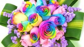 Multi Colored Bouquets Photo Free
