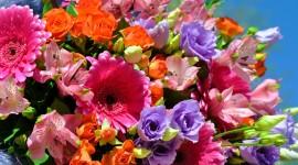 Multi Colored Bouquets Wallpaper Download
