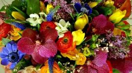 Multi Colored Bouquets Wallpaper Free