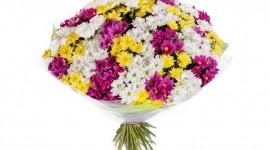 Multi Colored Bouquets Wallpaper HQ#1