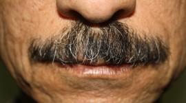 Mustache Wallpaper For Desktop
