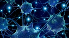 Neural Network Art High Quality Wallpaper