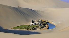 Oasis In The Desert Best Wallpaper