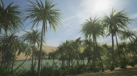 Oasis In The Desert Desktop Wallpaper
