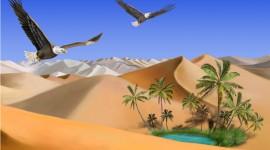 Oasis In The Desert Desktop Wallpaper For PC
