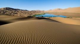 Oasis In The Desert Desktop Wallpaper HD