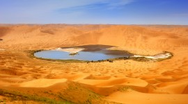 Oasis In The Desert Wallpaper Download Free