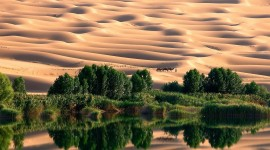 Oasis In The Desert Wallpaper For Desktop
