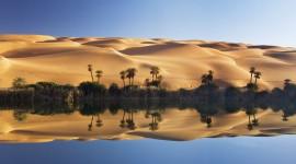 Oasis In The Desert Wallpaper For PC
