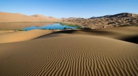 Oasis In The Desert Wallpaper Full HD
