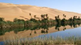 Oasis In The Desert Wallpaper Gallery