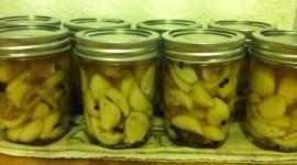 Pickled Garlic Wallpaper