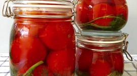 Pickled Tomatoes Photo