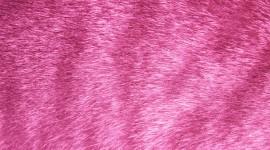 Pink Fur Wallpaper Background