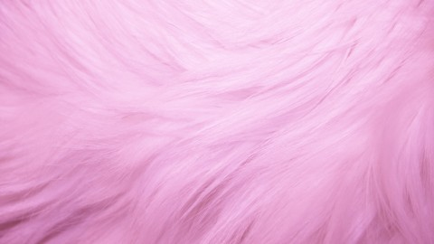 Pink Fur wallpapers high quality