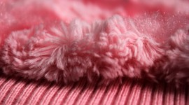 Pink Fur Wallpaper HQ
