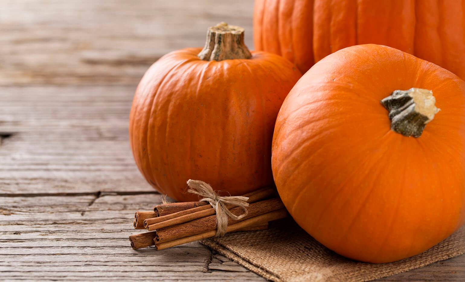 Pumpkin Wallpapers High Quality | Download Free