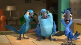 Rio 2 Photo Download