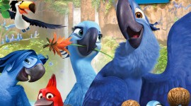 Rio 2 Wallpaper For Android