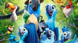 Rio 2 Wallpaper For IPhone
