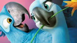 Rio 2 Wallpaper Gallery