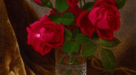 Rose In A Glass Wallpaper For IPhone#2