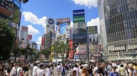 Shibuya Wallpaper Gallery