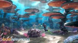 Subnautica Best Wallpaper