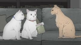 Three Cats Wallpaper Download