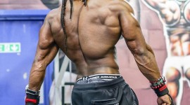 Ulisses Williams Wallpaper For PC