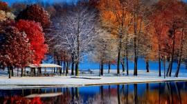 Winter Pictures Best Wallpaper