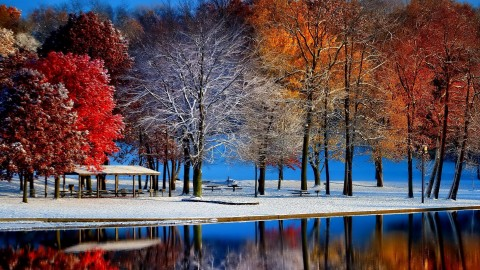 Winter Pictures wallpapers high quality