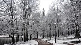 Winter Pictures Desktop Wallpaper