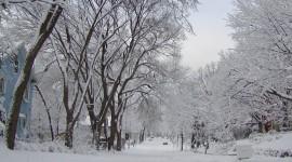 Winter Pictures Desktop Wallpaper#3