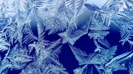 Winter Pictures Wallpaper Download Free