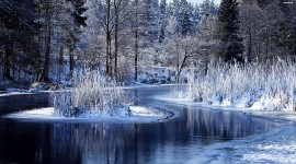Winter Pictures Wallpaper Free