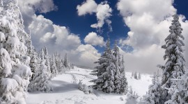 Winter Pictures Wallpaper Full HD#3